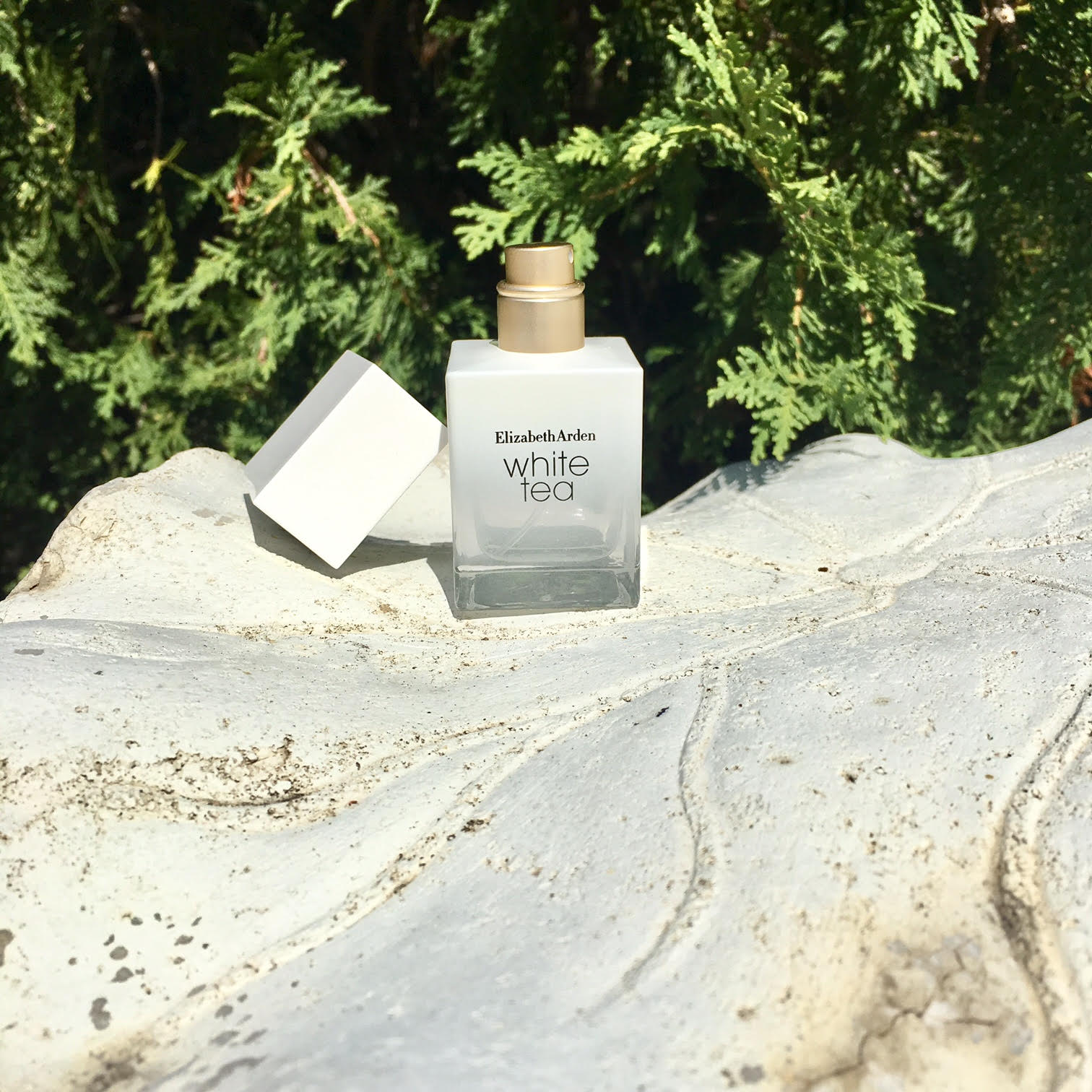 Summer Fragrance elizabeth arden white tea