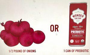 Prebiotic Foods Onions versus Kombucha Wonder Drink Prebiotic