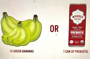Prebiotic Foods Green Bananas versus Kombucha Wonder Drink Prebiotic