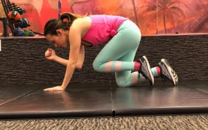 Pelvic Floor Exercises | Bird Dog
